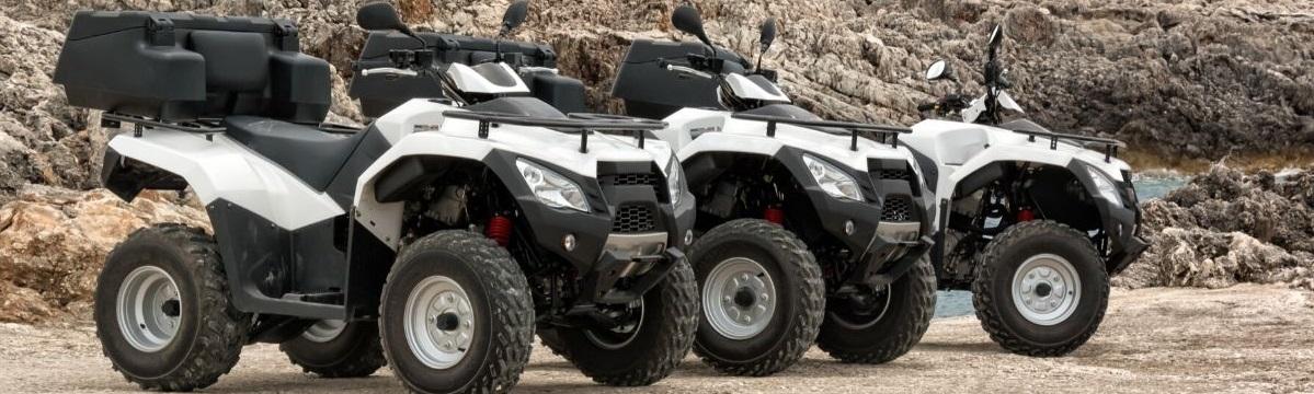ATV insurance cost